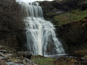 Burnet Force
