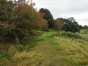 The former trackbed of the Wensleydale Railway