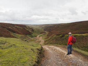 Looking back from Apedale Head