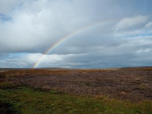 A rainbow above Apedale