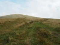 The bifurcation in the path with the left branch heading for the top of Arant Haw