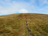 The steep final section of path on to Arant Haw