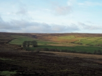 Looking across High Ash Head to Pott Moor