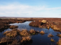 One of the many pools between the byway and the trig point