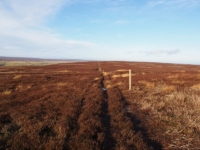 Following the fence posts around Shortlick Hill