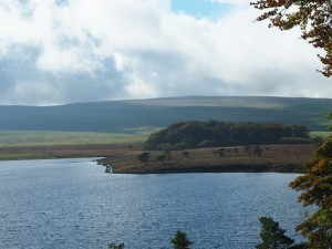Malham Tarn and Grizedales