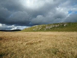 Looking back at the limestone knoll of Abbot Hills