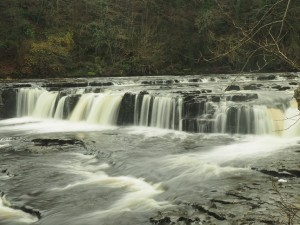 The upper section of Aysgarth Falls