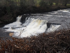 Aysgarth Falls - Middle Force