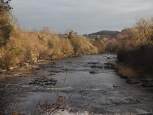 The River Ure below the lower falls at Aysgarth