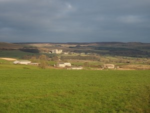Looking towards Bolton Castle