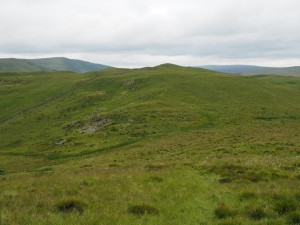 Hoggs Hill