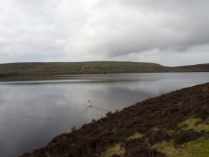 Looking across Upper Barden Reservoir towards Brown Bank