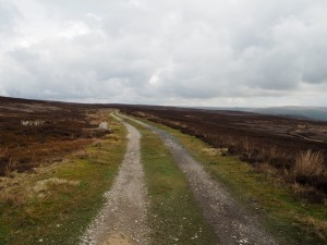The track contouring around the moor