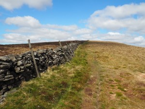 Following the wall on Firth Fell