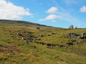 Water Gill and Birks Fell