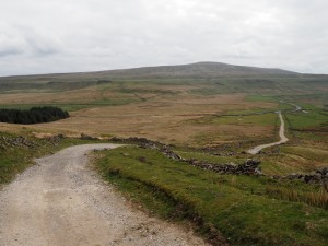 Looking back down the track with Buckden Pike beyond