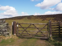 The gate leading on to High Bishopside from Wath Lane