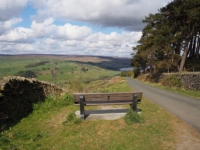 A bench with a view on Wath Lane