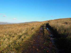 Following the path up the moor