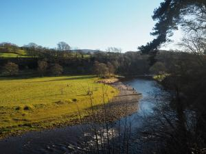 Looking down at the River Wharfe