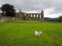 Barry and the remains of the Priory