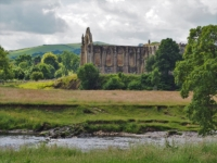 Bolton Priory from across the river
