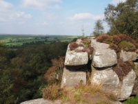 A high crag on the northern edge of Brimham Moor