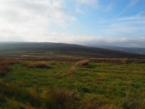 Looking across Embsay Moor towards Brown Bank