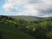 Looking up the Walden valley towards Brown Haw
