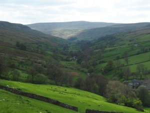 Waldendale and Buckden Pike from Nell Bank