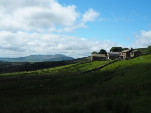Cam Houses and Ingleborough
