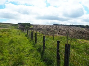 Following the fences uphill
