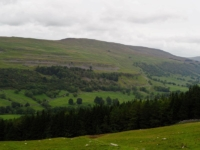 Firth Fell