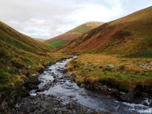 Carlingill Beck and Blease Fell