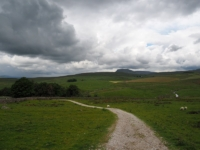 Looking towards Pen-y-Ghent. Catrigg Force is in the trees to the left.