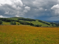 A view across the meadows towards Warrendale Knotts