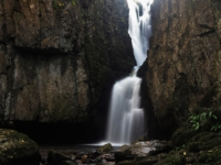 A close up of Catrigg Force
