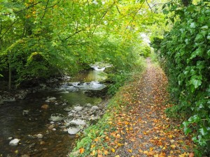 Path alongside Stainforth Beck