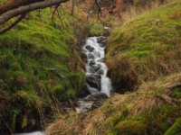 Another small waterfall below the path in Rooker Gill