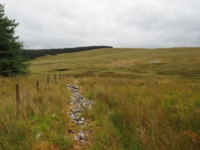 I left the byway to climb Birkwith Moor heading for plantation corner