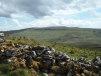 Plover Hill