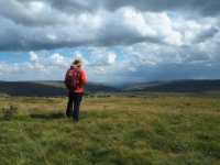 On the unmarked summit of High Green Field Knott looking towards Littondale