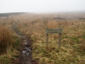 The path heading north towards Rylstone Cross
