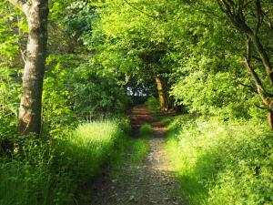 The start of the bridleway