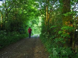 The bridleway leading to Linton