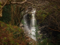 A glimpse of one of the larger waterfalls in Cray Gill