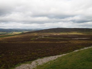 Long Scar Pike, the summit of Crosby Ravensworth Fell