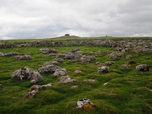 Heavily eroded limestone pavement to the north east of the summit