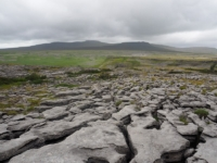 Another view of Ingleborough from the limestone pavement on Moughton